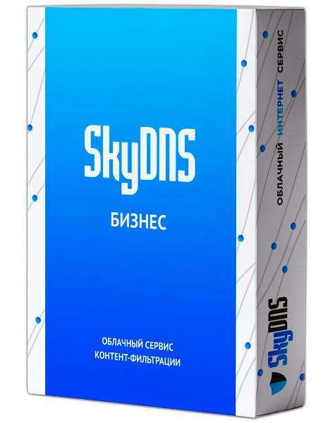SkyDNS Бизнес. 15 лицензий на 1 год