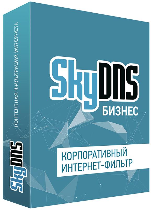SkyDNS Бизнес. 20 лицензий на 1 год