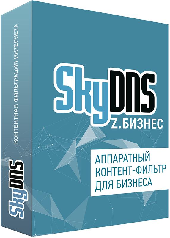 SkyDNS Z.Бизнес