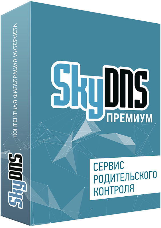 SkyDNS Премиум