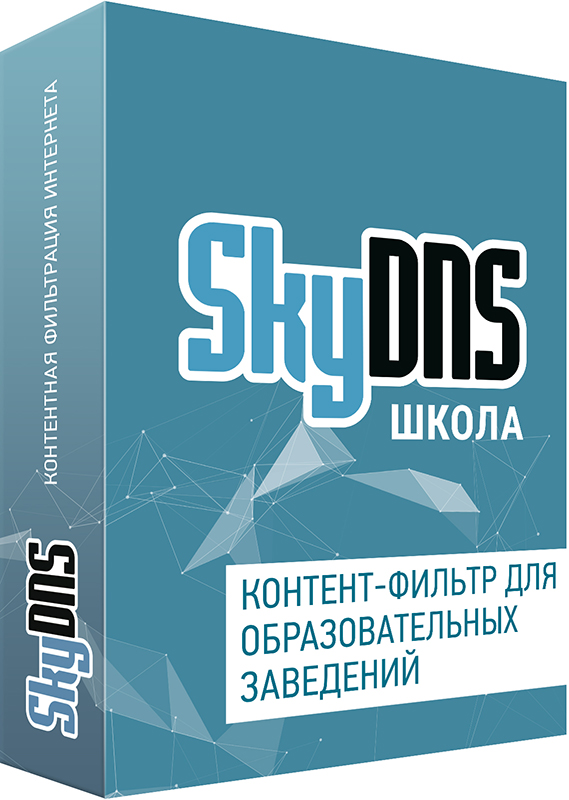 SkyDNS Школа