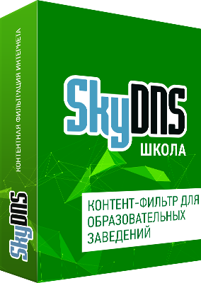 SkyDNS Школа