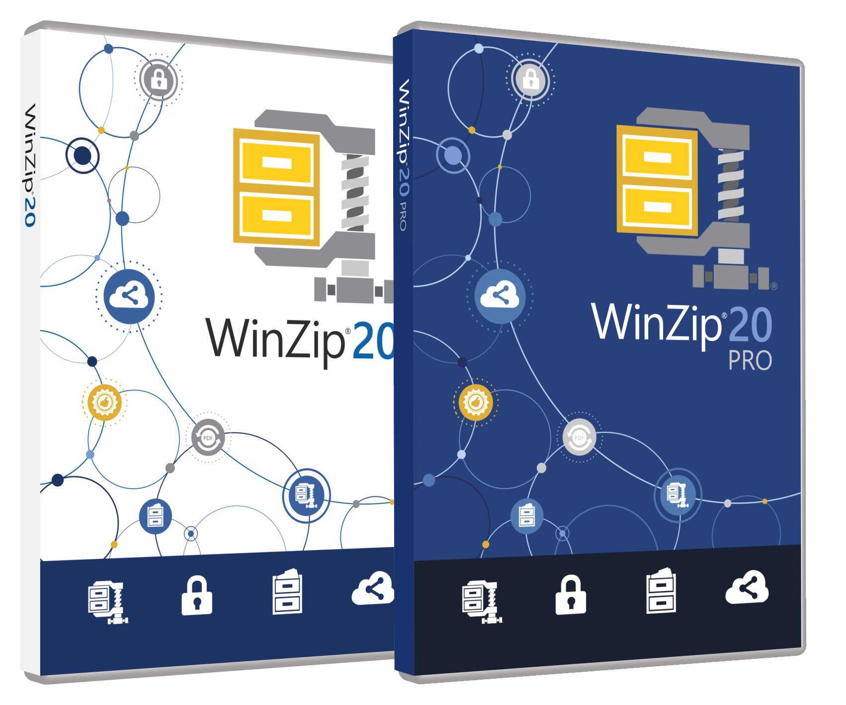 WinZip 20 Pro Single-User
