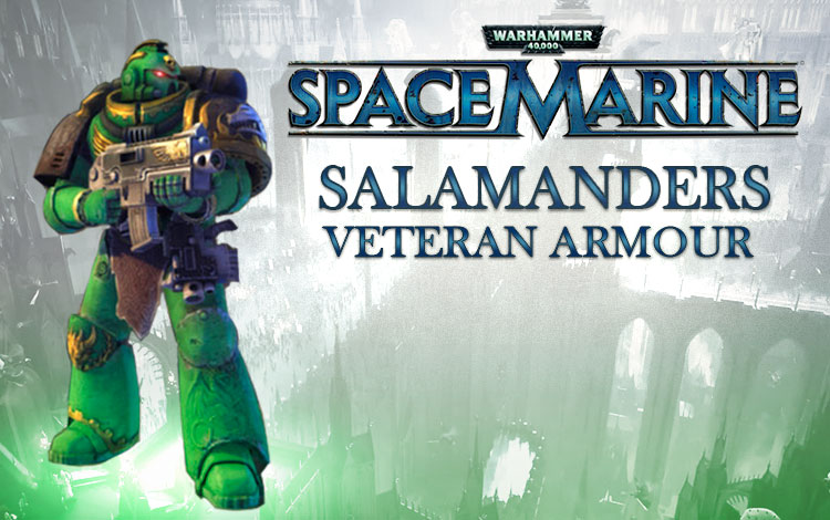 Warhammer 40,000 : Space Marine - Salamanders Veteran Armour Set DLC