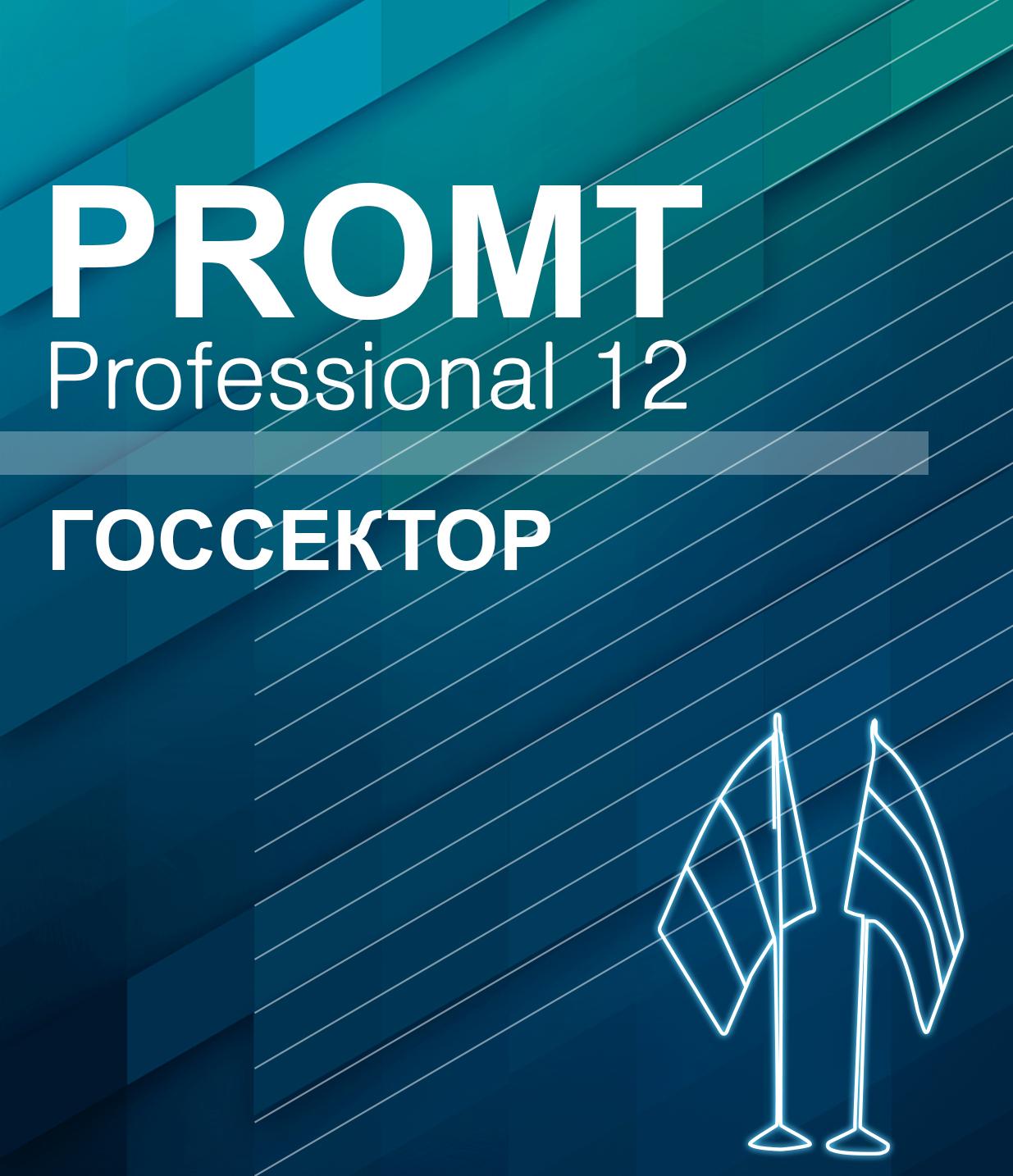 PROMT Professional 12 Многоязычный, Госсектор